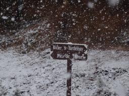 26:02:2018 L'Estérel sous la neige19