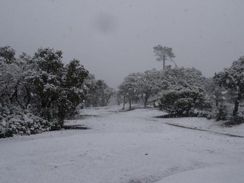 26:02:2018 L'Estérel sous la neige