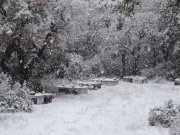 26:02:2018 L'Estérel sous la neige30